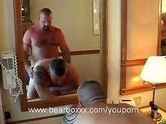 bear voyage:cabin cruisin