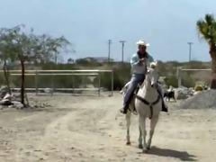 cowboys interlude