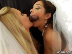 sizzling hawt lesbian babes explores pussies