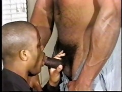 dad darksome bear ramming hard - his episode